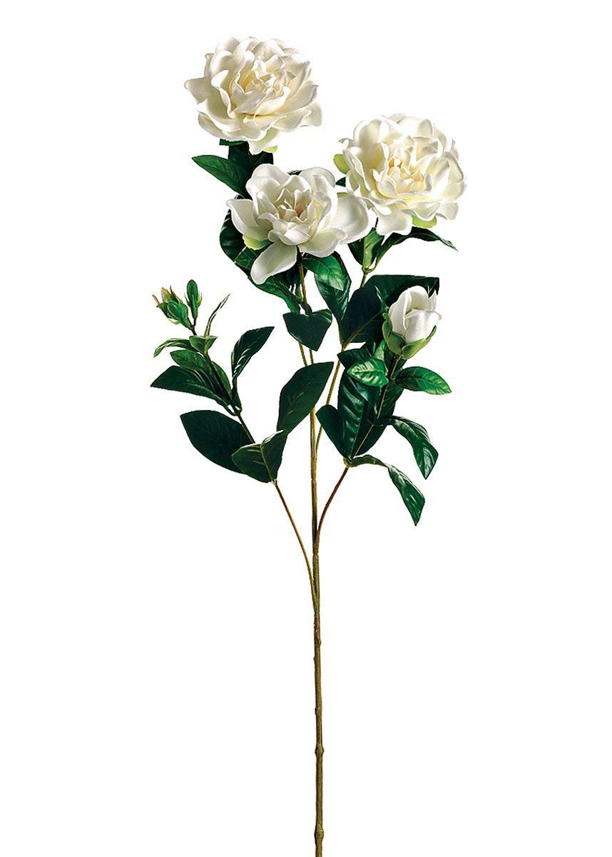 Afloral-Silk-Gardenia-Flowers-in-White-27-Tall