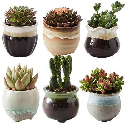 SUN-E 6 in Set 2.5 Inch Ceramic Flowing Glaze Black&White Base Serial Set Succulent Plant Pot Cactus Plant Pot Flower Pot Container Planter Idea : Garden & Outdoor