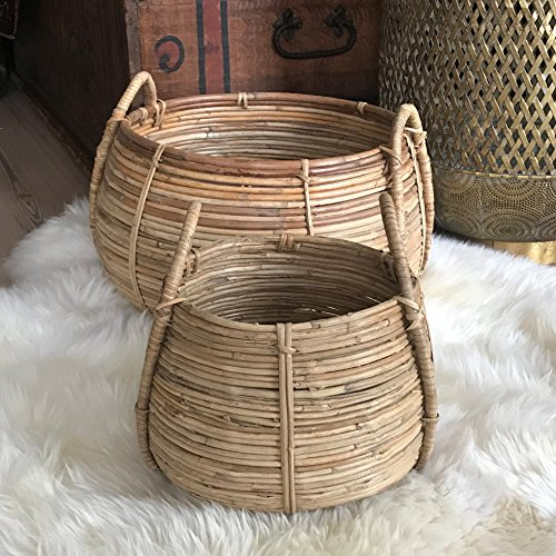 The Naturally Modern Belly Baskets, Set of 2, Rustic Natural,Woven Palm Cane, Stitched and Ribbed Details, Carry Handles, Both Over 1 Diameter Wide, (17 3/4 and 12 1/2 Inches, By Whole House Worlds (Cane Baskets Storage)