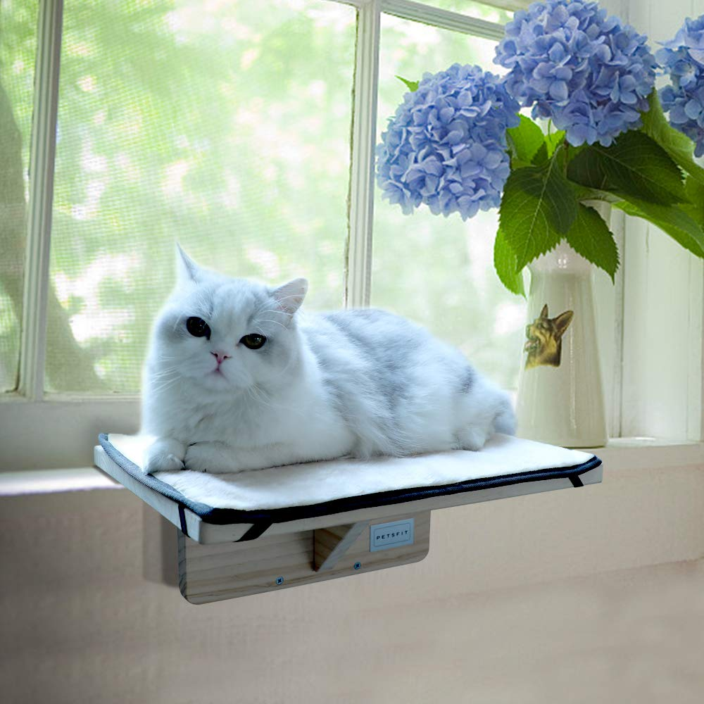 Petsfit Safety Sturdy Cat Window Perch, Without Damage Window and Adjustable to Fit Window Sill by Petsfit