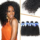 Lovenea TM 4Pcs Lot Outre Bohemian Jerry Curl Tracks Curly Virgin Human Hair Weave offers