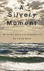 A Silvery Moment