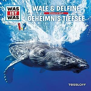 Wale und Delfine / Geheimnis Tiefsee (Was ist Was 13) Hörspiel