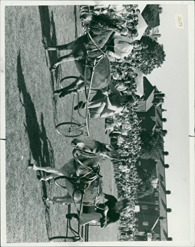 (Vintage photo of DONKEY DERBY)