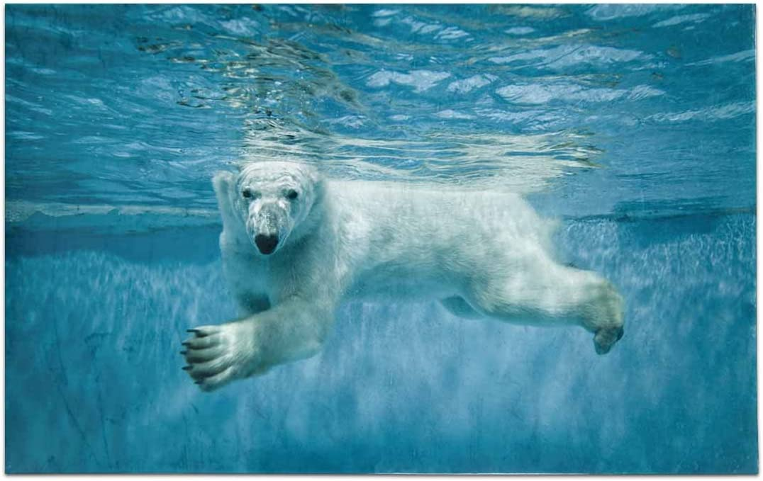 INTERESTPRINT Thalarctos Maritimus Ursus Maritimus Commonly Known As Polar Bear Swimming Under Water Non Slip Bathroom Mat Bath Rug, 20 W X 32 L Inches