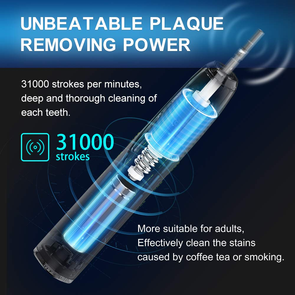 Fairywill Sonic Electric Toothbrush for Adults, with 2 DuPont Brush Heads Ultra-Powerful Cordless Rechargeable Dentist Recommended Whitening Toothbrush, Over 30 Days Long Battery Life by Fairywill (Image #5)