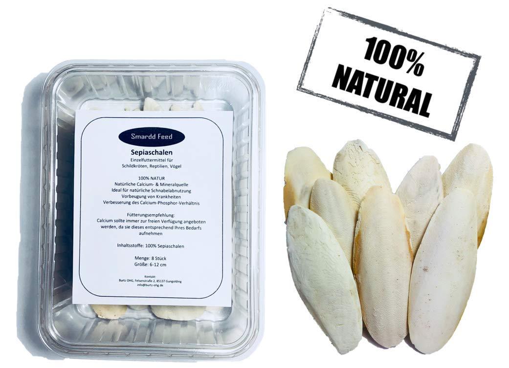 SmarddFeed - Sepia Schalen Natürliche Kalziumquelle 8 Stück Für Schildkröten, Vögel, Bartagamen/Top Qualität / 100% Natürlich Vögel