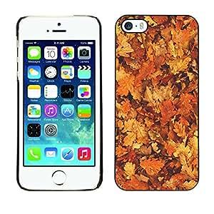 FECELL CITY // Duro Aluminio Pegatina PC Caso decorativo Funda Carcasa de Protección para Apple Iphone 5 / 5S // Leaves Golden Brown Autumn Forest