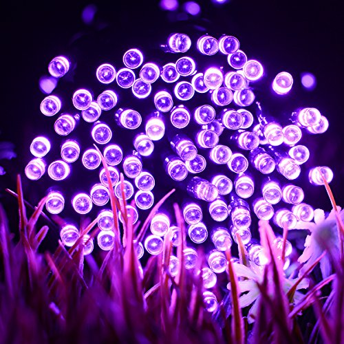 VMANOO Solar Christmas Lights, 72ft 22m 200 LED 8 Modes Solar String Lights for Outdoor, Indoor, Gardens, Homes, Party, Halloween Decorations, Waterproof (Purple) by VMANOO (Image #2)