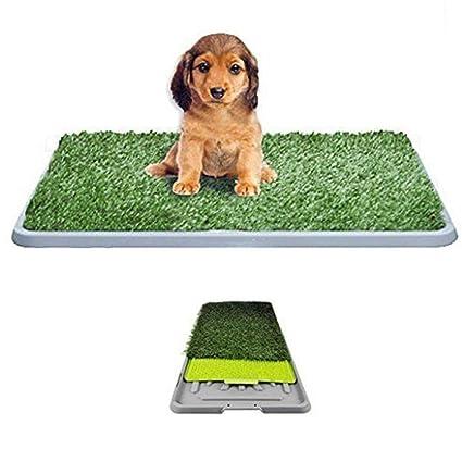 Cama para perros hierba sintética césped sintético alfombra absorbente antiolores