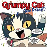 Grumpy Cat And Pokey (Collections) (2 Book Series)