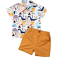 Toddler Baby Boy Flamingo Short Sleeve Button Down Shirt & Casual Shorts Set Summer Outfits 1-6 Years Clothes - Multi…