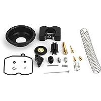 Artudatech Kit de reconstrucción de carburador para motocicleta