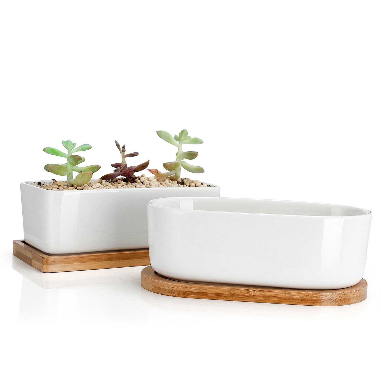Greenaholics Succulent Plant Pots - 6 Inch Rectangular Ceramic Planters, Small Cactus Container, Bonsai Pots, Flower Pots with Drainage Hole, Bamboo Tray, Set of 2, White by Greenaholics