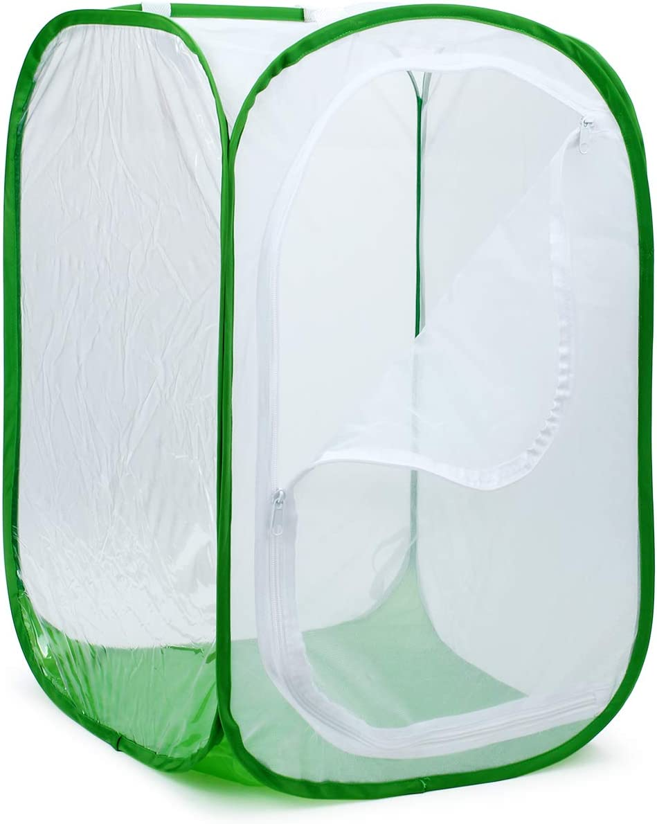 Giant Collapsible Insect Mesh Cage Terrarium Pop-up 24 x 24 x 36 Inches RESTCLOUD 2-Pack 36 Large Monarch Butterfly Habitat