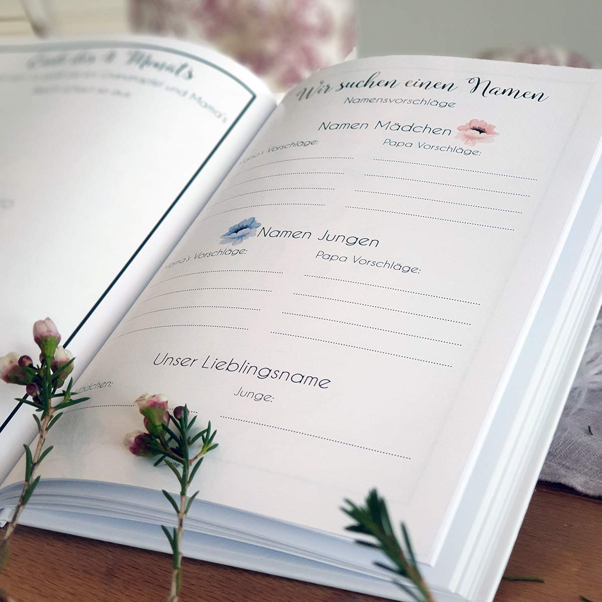 Record The Most Beautiful Moments of a Expectant Mother and her Pregnancy in The Diary Pregnancy Diary