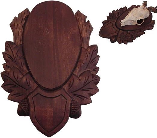 Pack de 5 tallada trofeo escudo gehörnb Junta de cabeza de ciervo trofeo escudo ciervos ROE Buck cuernos Junta: Amazon.es: Hogar