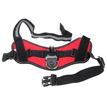 SODIAL (R) montaje de perro con cámara ajustable Correa de fijación para cámara GoPro Hero 3 3 2 4 1 compartimento: Amazon.es: Electrónica