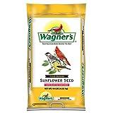 Wagner's 76025 Four Season Oil Sunflower