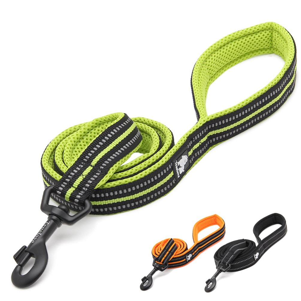 Green PENTAQ 200 cm Long 2cm Wide Dog Leash Rope 3M Reflective Stripes Soft and Breathable Mesh with Strong Steel Hook Night Time Dog Walking Leash (Green)