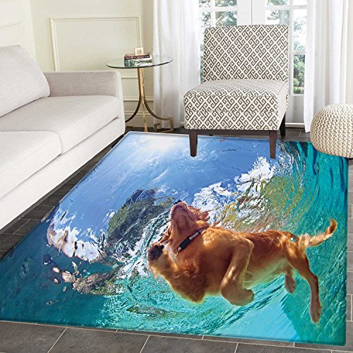 Funny Area Rug Carpet Underwater Photo of Golden Labrador Retriever Puppy Swimming in Pool Happy Living Dinning Room and Bedroom Rugs 3'x4' Cinnamon (4' Labrador Retriever)