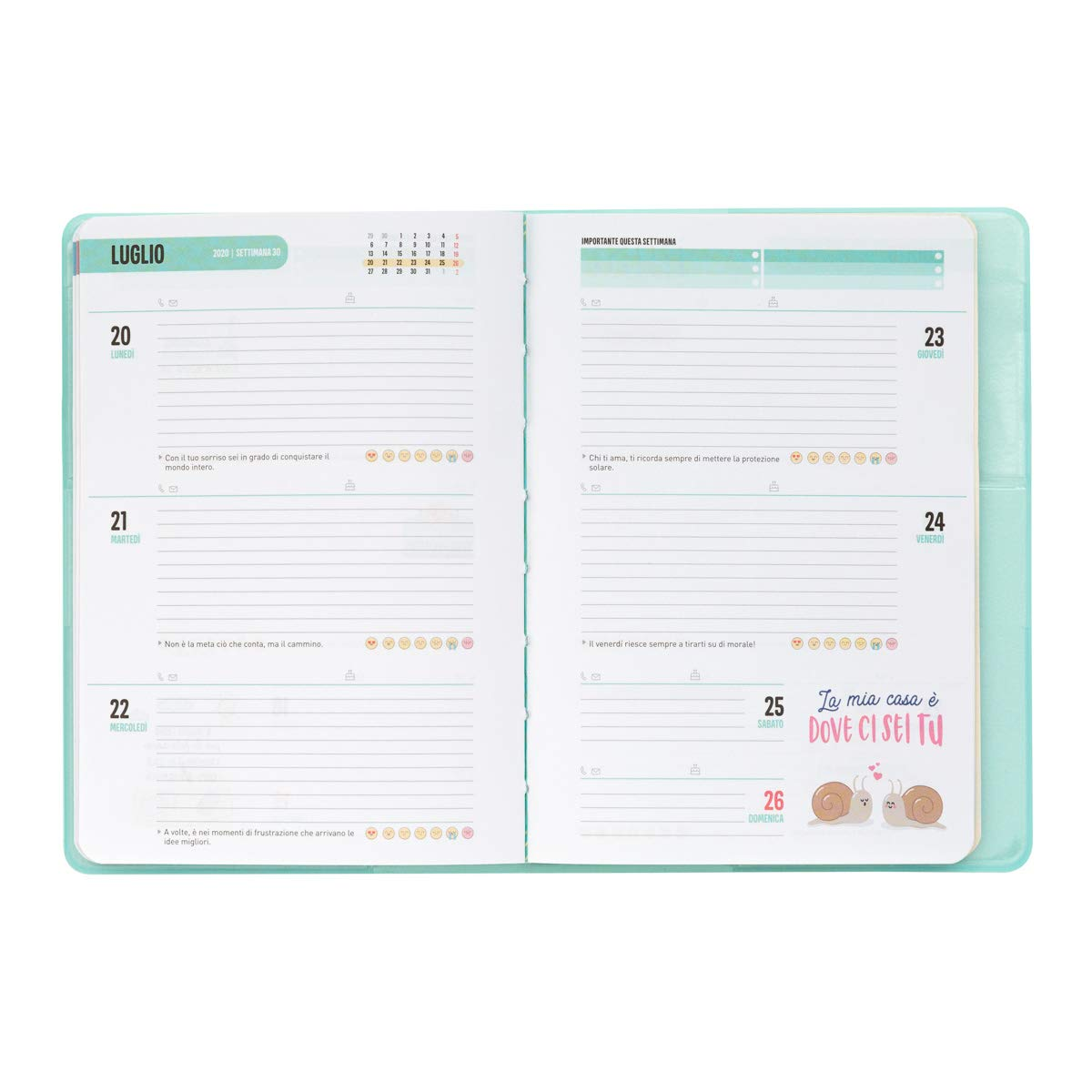 Amazon.com: Mr. Wonderful Classic Small Weekly Planner 2019 ...