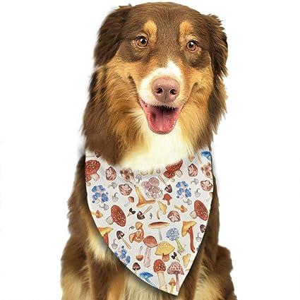 Amazon com : fengyijiating Red Mushrooms Dog Bandana Collars