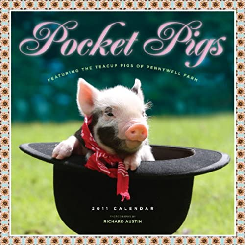 Book Pocket Pigs: The Teacup Pigs of Pennywell Farm Calendar 2011