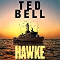 Hawke Audiobook by Ted Bell Narrated by John Shea