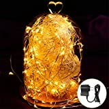 Hictech Fairy Starry LED Copper Wire String Rope Lights Waterproof Decorative for Christmas Holiday Party Indoor Outdoor Homes Decor with UL Certified Charger [65.6Ft Copper Wire, 200 Warm White LED]