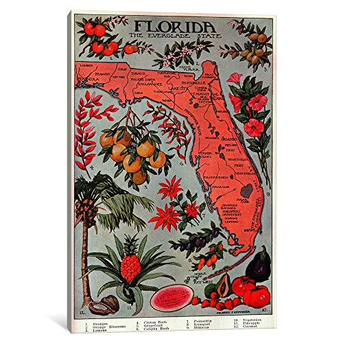 iCanvasART  State Map of Florida 'Natural Resources'-Vintage