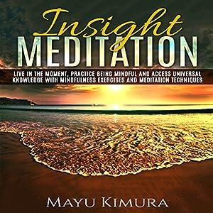 Insight Meditation Audiobook