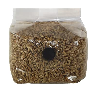 Sterilized Rye Berry Mushroom Substrate with Self Healing Injection Port (1) : Garden & Outdoor