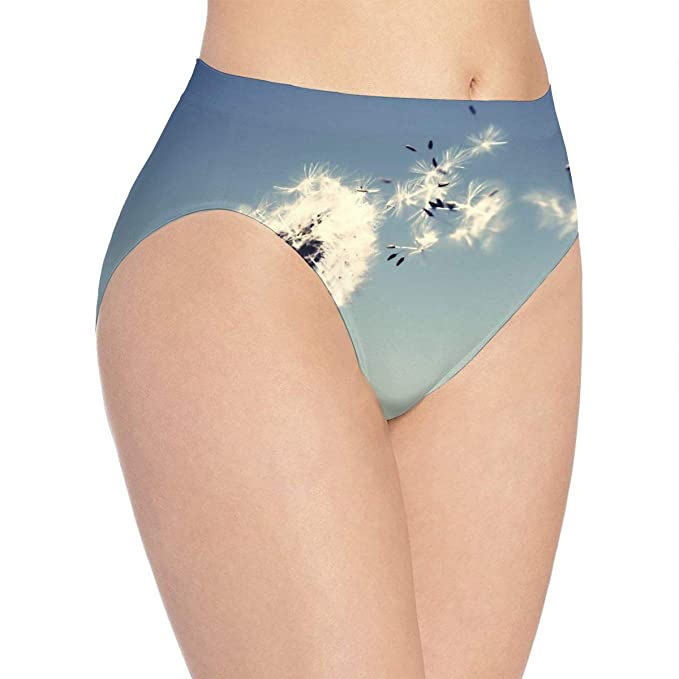 High Waist Panties Women s Underwear Soft Breathable Dandelion Brief Panty  at Amazon Women s Clothing store  77a3a8a96