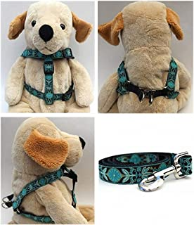 "product image for Diva-Dog 'Boho Peacock' Custom 5/8"" Wide Dog Step-in Harness with Plain or Engraved Buckle, Matching Leash Available - Teacup, XS/S"