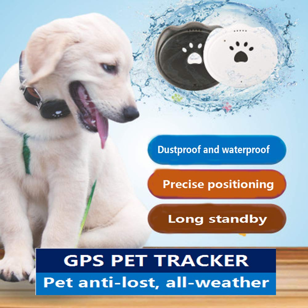 Amazon.com: Jason Zeng GPS rastreador de mascotas y monitor ...