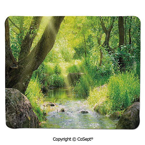 Non-Slip Rubber Base Mousepad,Stream Cascade in Tropical Forest Among Trees Jungle Woodland Serene Landscape Decorative,for Laptop,Computer & PC (11.81