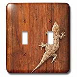 3dRose  lsp_73116_2 Tokay Gecko Lizard Striated Wood Africa-Af31 Dsl0019 David Slater Double Toggle Switch