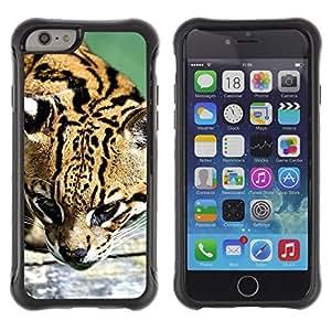 """Pulsar iFace Series Tpu silicona Carcasa Funda Case para Apple (4.7 inches!!!) iPhone 6 , Ocelot felino cazador lindo gato grande salvaje"""""""
