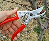 Sprite Science8482; Traditional Ideal Bypass Pruning Shears / Garden Scissors / Tree Trimmer / Tree Clippers / Hand Pruners / Hedge Shears / Hand Grass Shears / Bonsai Cutters, Trimmer & Garden Tool for Professional & Home Use - Strong, Durable Razor Shar