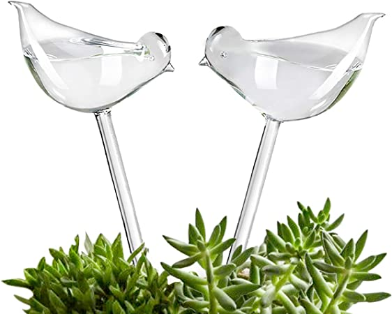 Plant Waterer self watering Globes product image