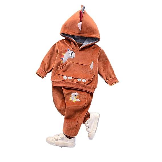 f03ae93c7ca03 Robemon✬Hiver Ensemble Bébé Fille Garçon Vêtements Chapeau Dinosaures Top  Manches Long Hoodies Poche Top+