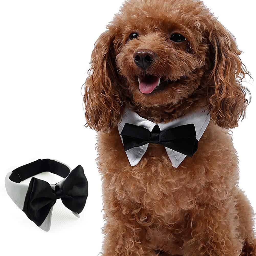 Ouken Formel Pets Bowtie Chienne Chat Pets réglable Bow Cravate et Collier 2PC Taille-M Doux Noir