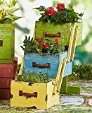 3-Tiered Stacked Wood Drawer Planters (Multicolor)