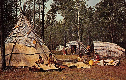 Postcard Teepee (Hayward Wisconsin Chippewa Indian Village Teepees Vintage Postcard K101700)
