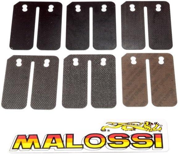 Aprilia Injection Suzuki-Katana 50 Einlassmembrane MALOSSI Carbon