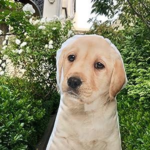 "Cushion Co - Labrador Puppy Dog Shaped Pillow Pet 16"" x 12"""