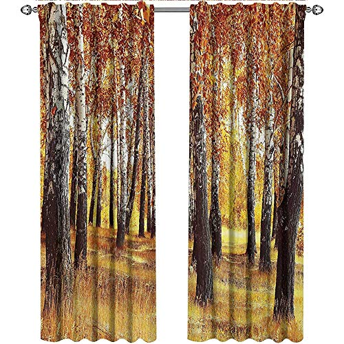 Woodland, Curtains Sliding Glass Doors, Jungle in Fall with Yellow Birches and Dry Herb Autumn Leaves Warm Weather Photo, Curtains for Boys Room, W84 x L84 Inch, Orange Brown ()