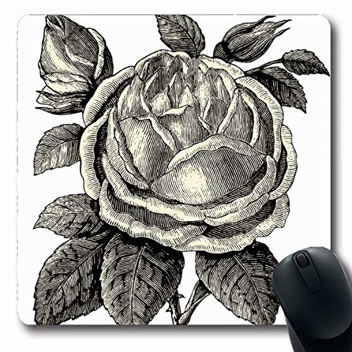 (Ahawoso Mousepads Florist Pink Botanist Roses Vintage Engraved Dictionnaire Encyclopedique Nature Botany Century Oblong Shape 7.9 x 9.5 Inches Non-Slip Gaming Mouse Pad Rubber Oblong Mat)