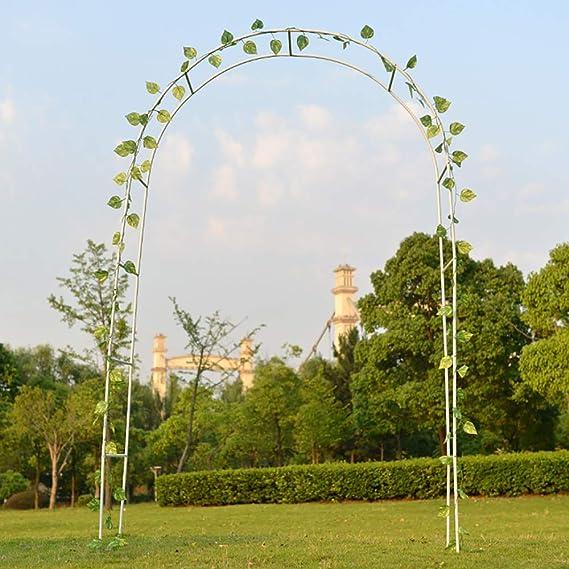Utopone Arco de Boda de jardín de Metal, Arco de pérgola para Plantas trepadoras Decoración de Fiesta Nupcial (Blanco/Verde/Negro): Amazon.es: Jardín